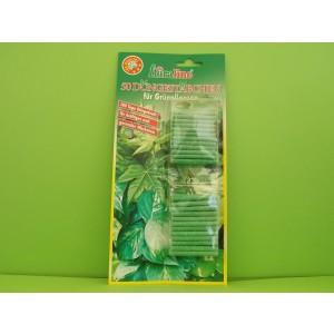 50 Bețisoare de îngrășăminte pentru verdeață